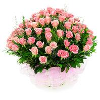 핑크빛 참사랑 (장미60~100송이)