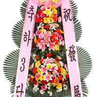 축하3단(재사용화환)010-5046-5595